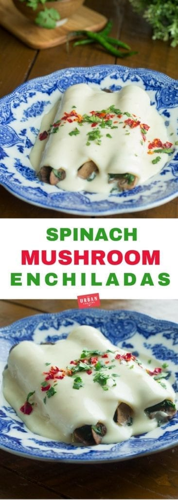 Spinach and Mushroom Enchiladas